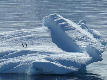 南極大陸内での食事はどんなものを食べている?