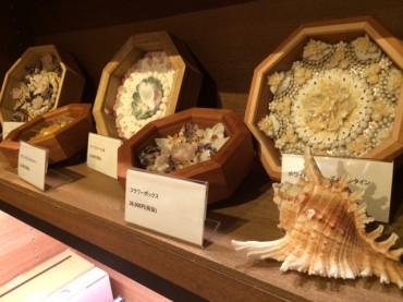 手しごと好き必見、美しすぎる貝がらアートの本。