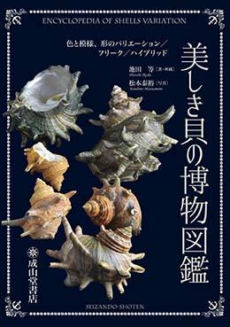 美しき貝の博物図鑑
